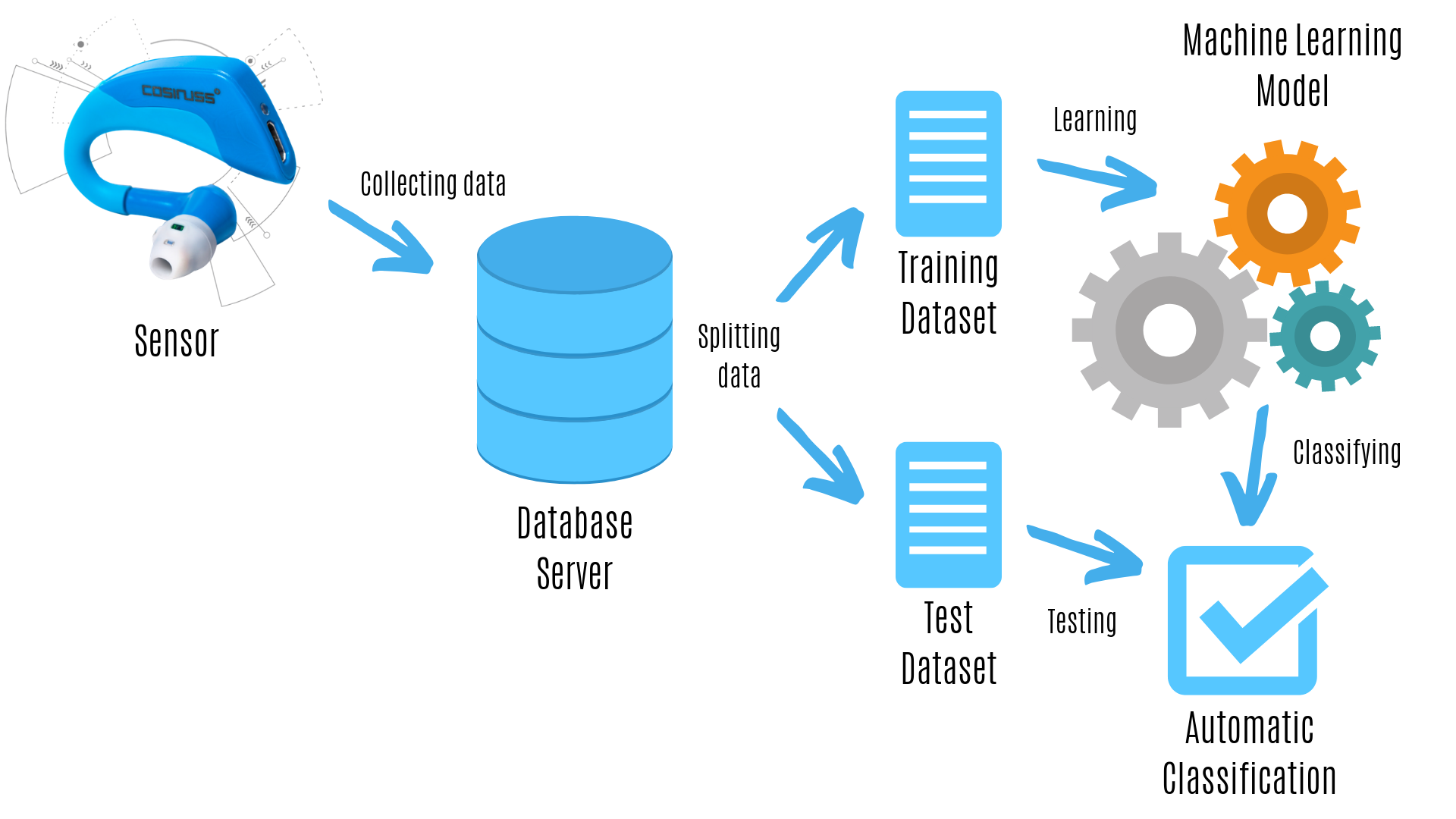 Creation of a Machine Learning Model with data from cosinuss One